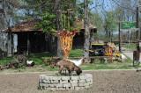 U Kragujevcu kradu životinje iz zoo-vrta za hranu