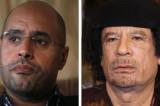 Gadafijev sin najavljuje kandidaturu za predsednika