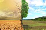Njihova i naša ekologija