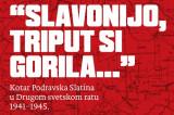 """Predstavljanje knjige """"Slavonijo, triput si gorila…"""" Milana Radanovića"""