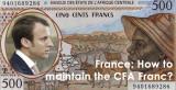Osam afričkih država povlači svoje devizne rezerve iz Francuske i ukida kolonijalni franak!