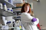 Započela druga faza testiranja vakcine protiv koronavirusa