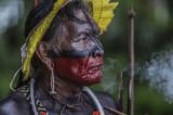 Autohtoni narodi Južne Amerike najbolji čuvari šuma