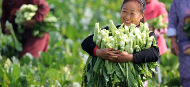 Generalni sekretar UN pohvalio značajan doprinos Kine u iskorenjivanju siromaštva