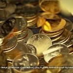 Turska uhapsila kovače novca Islamske Države