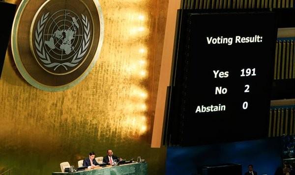 onu-votacion