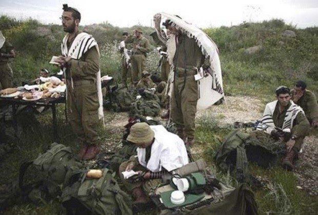 rabbiss