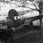 Prva partizanska krila (I)
