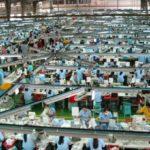 Bolovanje za 500 radnika fabrike koja proizvodi za Najki i Pumu